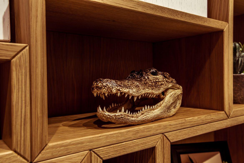 showroom yulmob cap de crocodin 2